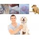 Naturalna obroża przeciwko pchłom i kleszczom dla psa